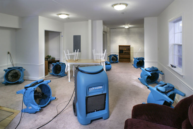 Naperville-Illinois-flood-damage-repair-company